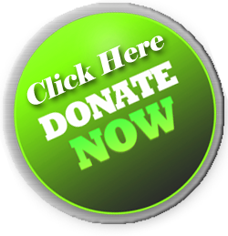 make a donation button